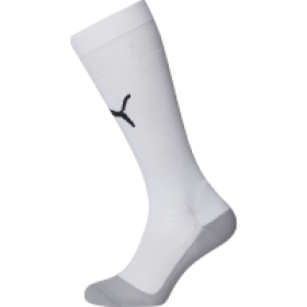 Puma Indoor Professional Socks White